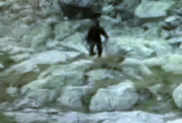 Интересные факты Снежный человек - YouTube