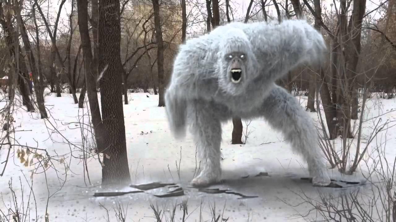 По следам снежного человека - факты о йети